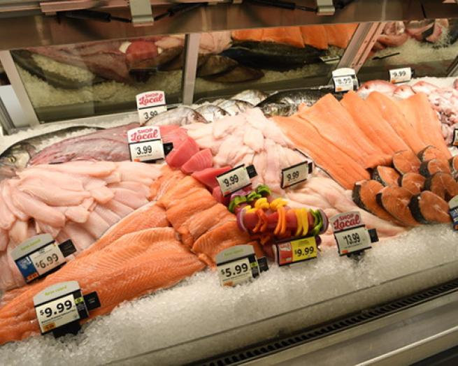 fish in a store